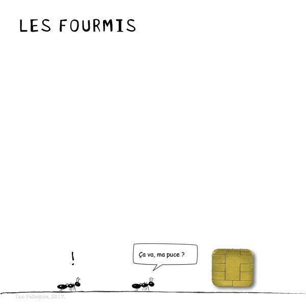 LES FOURMIS - La puce / Luc Pallegoix, 2017